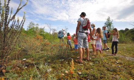 Une idée de sortie en famille : visite à la Maison des Dranse et de la Réserve Naturelle du delta de la Dranse.